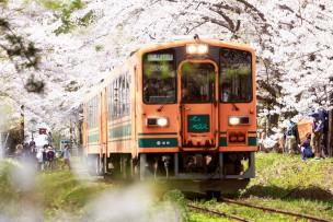 ローカル鉄道の支援ができる光コラボ「ローカル線光GO」登場!