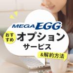 メガエッグのおすすめオプションサービスと解約方法まとめ